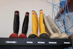Sewage Cleanup Boots